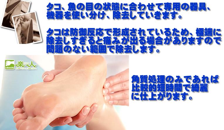 corn_sejyutsu_setsumei_new