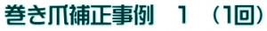 sample_hosei_jirei01